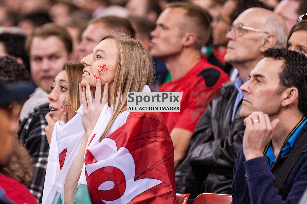 The TMO pause - Wales fans stare anxiously at the big screen. Action from the Wales & Fiji game in Pool A of the 2015 Rugby World Cup at Milennium Stadium in Cardiff, 1 October 2015. (c) Paul J Roberts / Sportpix.org.uk