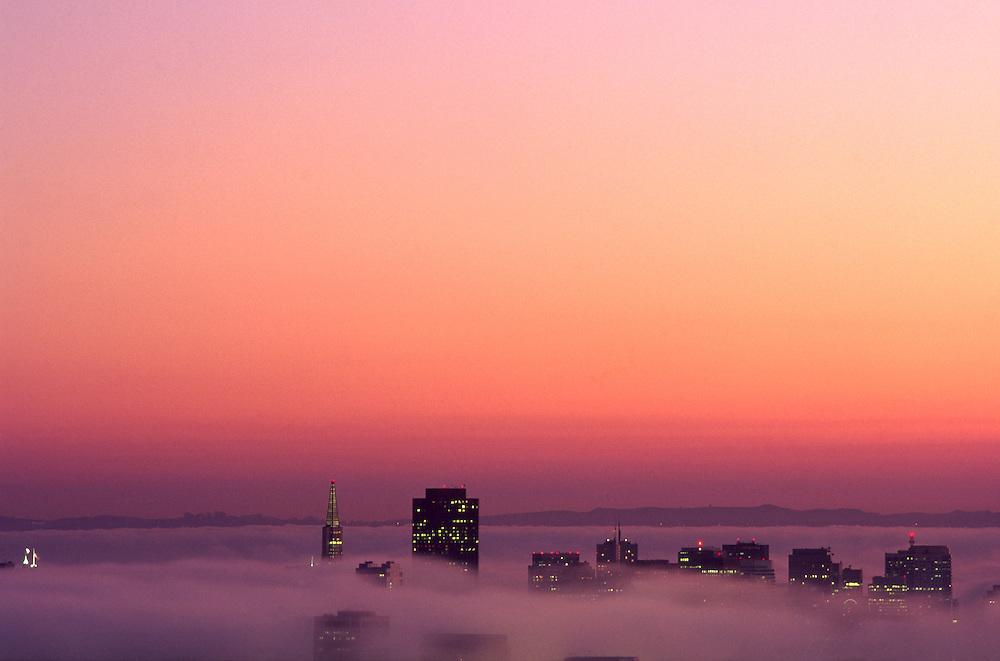 Dawn fog, San Francisco, CA, from Twin Peaks