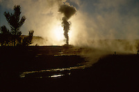 Old Faithful at sunrise, Yellowstone National Park, WY