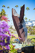 Breaching Whale Sculpture in Laguna Beach California