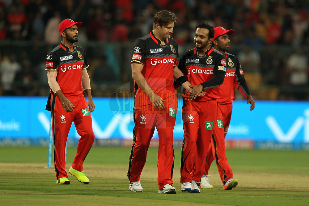 Shane Watson captain of Royal Challengers Bangalore celebrates wicket of Patrick Cummins of Delhi Daredevils during match 5 of the Vivo 2017 Indian Premier League between the Royal Challengers Bangalore and the Delhi Daredevils held at the M.Chinnaswamy Stadium in Bangalore, India on the 8th April 2017Photo by Prashant Bhoot - IPL - Sportzpics