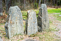 Sweden, Halleberg table mountain. Kings stones.
