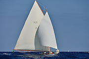 "France Saint - Tropez October 2013, Classic yachts racing at the Voiles de Saint - Tropez<br /> <br /> C,NY11,ORIOLE,""14,1"",NY30 AURIQUE/1905,HERRESHOFF"
