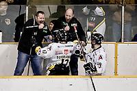29. Mars 2010 , Ishockey , Get - ligaen  ,  eliteserien , Stavanger Oilers v Sparta Sarpsborg , Siddishallen , Oilerstrener Petter Thoresen jubler,  Foto: Tommy Ellingsen