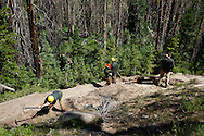 Americorps volunteers rebuild a trail at Cedar Breaks National Monument, Utah.