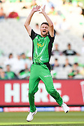 14th January 2019, Melbourne Cricket Ground, Melbourne, Australia; Australian Big Bash Cricket, Melbourne Stars versus Hobart Hurricanes;  Jackson Bird of the Melbourne Stars appeals for a wicket