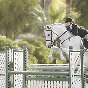 Interscholastic Equestrian League