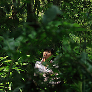 Conservationist Vu Thi Quyen stands amid the trees of Cuc Phuong National Park, 140 kilometers south of Hanoi, Vietnam. The 31-year-old Quyen started Vietnam's first domestic wildlife conservation group, Education for Nature Vietnam (ENV), four years ago. Now based in Hanoi, she is at the forefront of a growing movement to help Vietnamese understand the importance of conserving wildlife in one of Asia's most ecologically diverse nations. ..