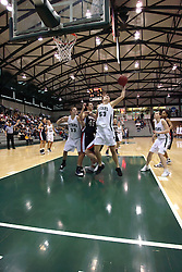 10 January 2009: Christina Solari grabs an offensive rebound. The Lady Titans of Illinois Wesleyan University downed the and Lady Thunder of Wheaton College by a score of 101 - 57 in the Shirk Center on the Illinois Wesleyan Campus in Bloomington Illinois.