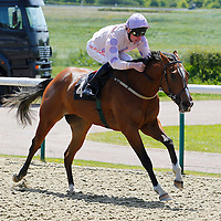 Lingfield 4th June 2013