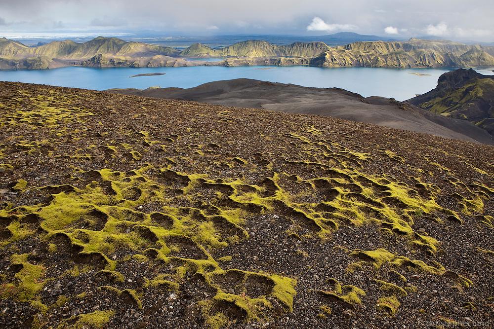 Mosi á Breiðbak. Langisjór og Fögrufjöll í baksýn. Moss on Mount Breidbakur. Lake Langisjor in background.