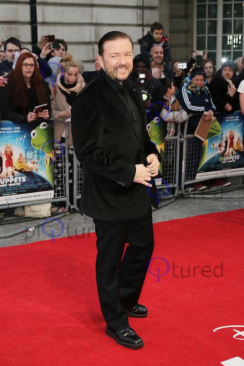 Ricky Gervais, Muppets Most Wanted - VIP screening, Curzon Mayfair, London UK, 24 March 2014, Photo by Richard Goldschmidt