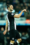 Andy Carroll (#7) of Newcastle United during the Premier League match between Newcastle United and Crystal Palace at St. James's Park, Newcastle, England on 21 December 2019.