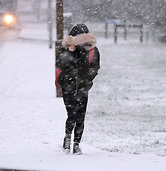 Snow in West Lothian, 10 February 2020<br /> <br /> Following on from the destruction of Storm Ciara, heavy snow started to fall in West Lothian this afternoon<br /> <br /> Pictured: A young woman tries to shelter from the snow<br /> <br /> Alex Todd | Edinburgh Elite media
