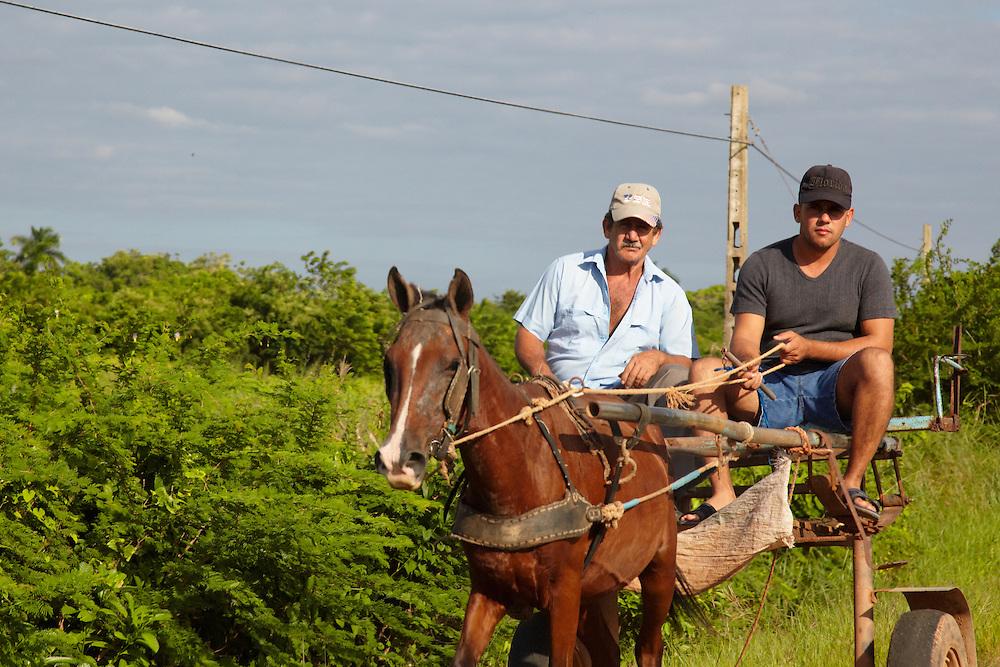 Horse cart near Arroyos de Mantua, Pinar del Rio, Cuba.
