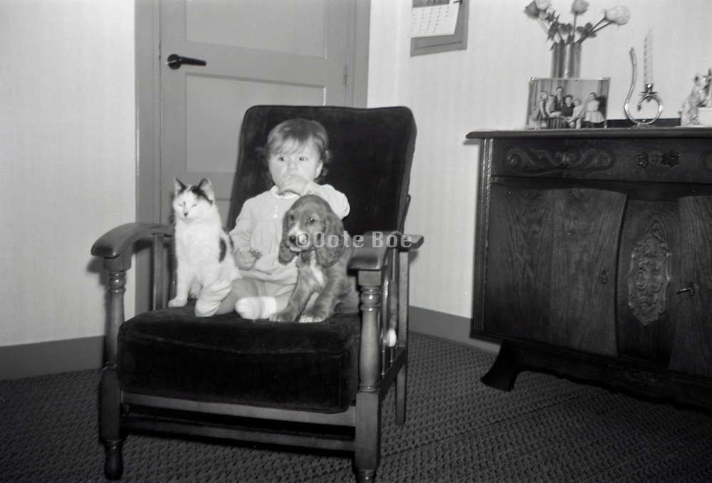 A little girl with dog and cat sitting in a chair 1960s Holland