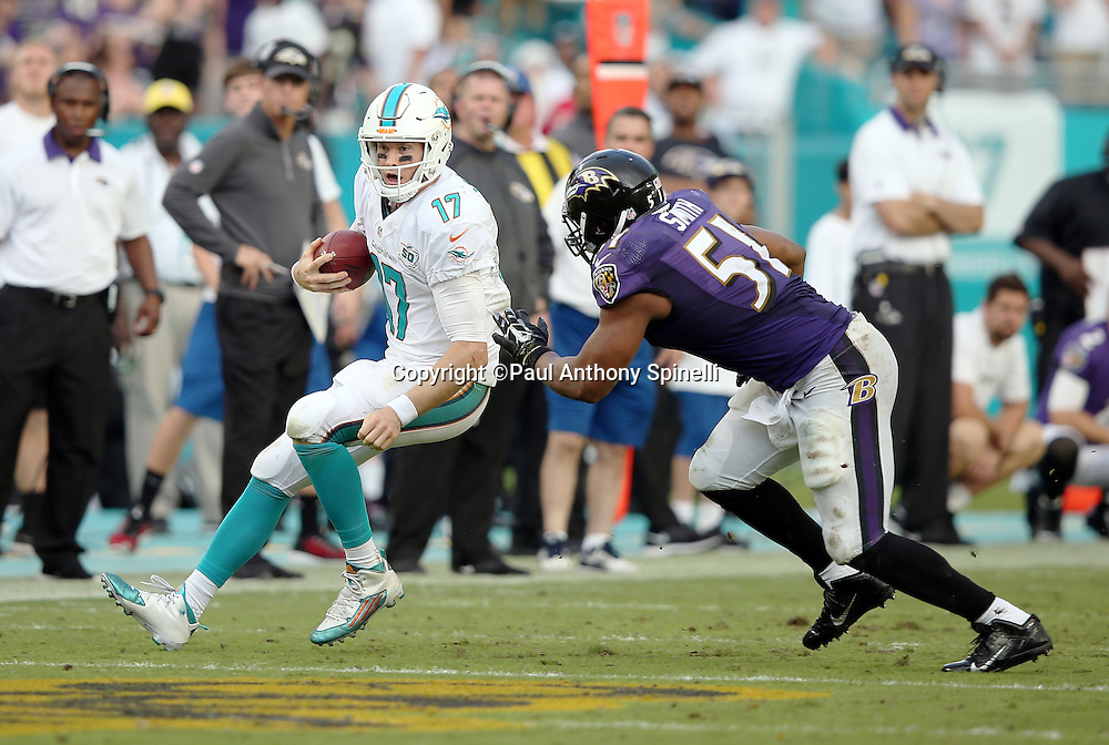 Miami Dolphins quarterback Ryan Tannehill (17) is chased by Baltimore Ravens inside linebacker Daryl Smith (51) as Tannehill slides while still in bounds in order to burn the fourth quarter clock with a 15-13 lead during the 2015 week 13 regular season NFL football game against the Baltimore Ravens on Sunday, Dec. 6, 2015 in Miami Gardens, Fla. The Dolphins won the game 15-13. (©Paul Anthony Spinelli)