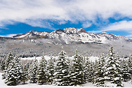 A picture taken on Wolf Creek Pass in Colorado right after a winter storm.<br />