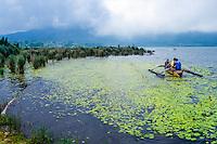 Bali, Tabanan, Bedugul. Fishing on the Bratan lake.