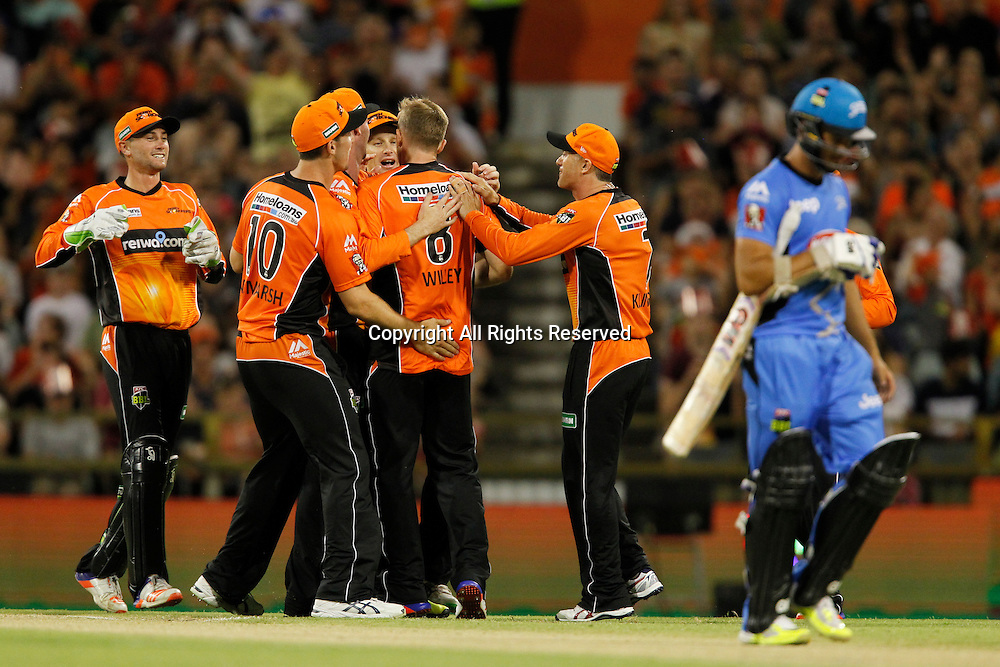 23.12.2016. WACA Ground, Perth, Australia. BBL Cricket League. Perth Scorchers versus Adelaide Strikers. David Willey celebrates his second wicket having trapped Jake Weatherald L.B.W. for 1.