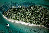 August 1991, Moorea, French Polynesia --- Palm trees cover an island surrounded by a coral reef. Moorea, French Polynesia. --- Image by © Owen Franken/CORBIS