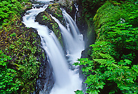 Sol Doc Falls on the Sol Doc River crashes into a narrow gorge, sending a mist in to the air. Olympic National Park, Washington, USA