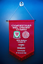 CARDIFF, WALES - Friday, November 16, 2018: The Wales match pennant in the dressing room before the UEFA Nations League Group Stage League B Group 4 match between Wales and Denmark at the Cardiff City Stadium. (Pic by David Rawcliffe/Propaganda)