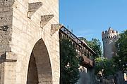 Johannistor und Pulverturm, Stadtbefestigung Wehranlagen am Pulverturm, Jena, Thüringen, Deutschland | city walls, Johannis gate and magazine, Jena, Thuringia, Germany