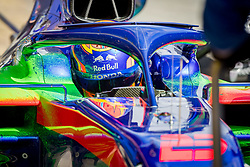 February 19, 2019 - Barcelona, Spain - Detail of Alex Albon (Scuderia Toro Rosso Honda) with the new STR14 car during second journey of F1 Test Days in Montmelo circuit, on February 19, 2019. (Credit Image: © Javier MartíNez De La Puente/NurPhoto via ZUMA Press)