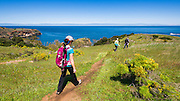 Hikers on the Pelican Bay trail, Santa Cruz Island, Channel Islands National Park, California USA
