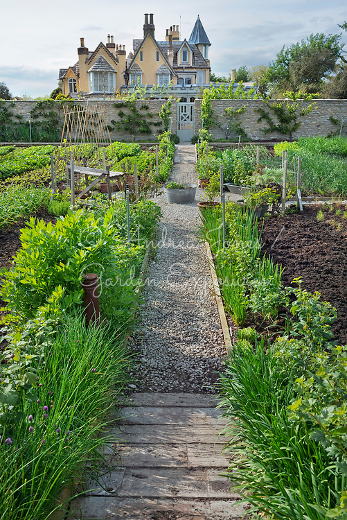 Gravel path, herb, fruit and vegetable beds with espalier fruit trees on wall in the walled garden at Pig on the Beach, Dorset, England