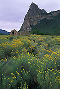 Driggs Mansion, Drigg's, Unaweep Canyon, Thimble Rock, Western Slope, Colorado