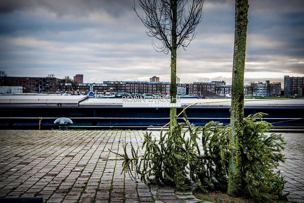 rotterdam - kersbomen zwerven door rotterdam op straat na de kerst bij het afval dumpen kerstboom ROBIN UTRECHT