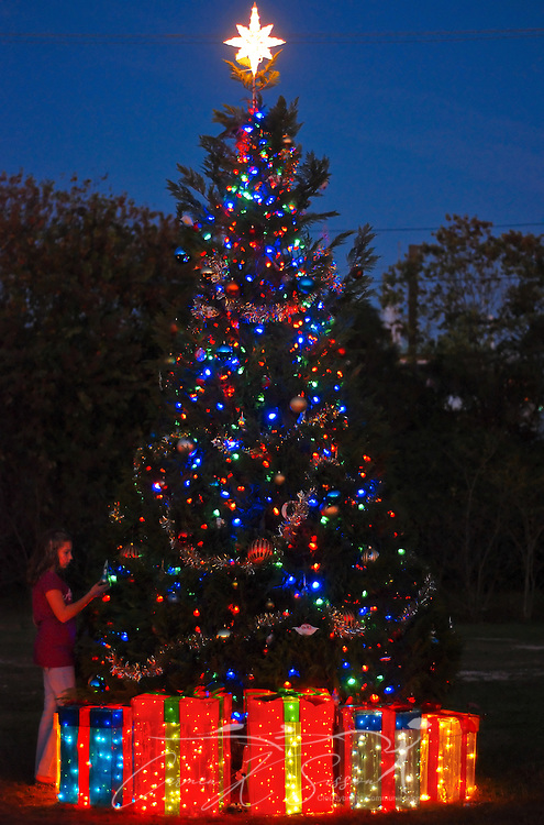 beth taylor inspects the christmas tree beside bayou la batre city hall following the annual tree - Christmas In The Bayou