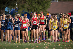 The Guelph Gryphons prepare for the start of the the women's  6K Dash at the 2013 CIS Cross Country Championships in London Ontario, Saturday,  November 9, 2013.<br /> Mundo Sport Images/ Geoff Robins