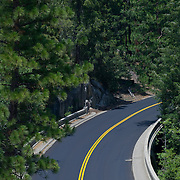 Road on Yosemite Natl. Park. California, USA.