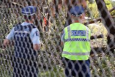 Auckland-Protestors stop developer cutting trees, New Lynn