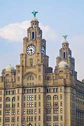 Liverpool, England - Sunday, June 10, 2007: The Liver Building. (Pic by David Rawcliffe/Propaganda)