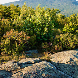 Mount Monadnock as seen from Gap Mountain in Troy, New Hampshire.  Society for the Protection of New Hampshire Forests' Gap Mountain Reservation.