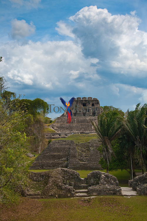 A scenery of a Maya site in Xunantunich in San Jose Succotz, Cayo, Belize