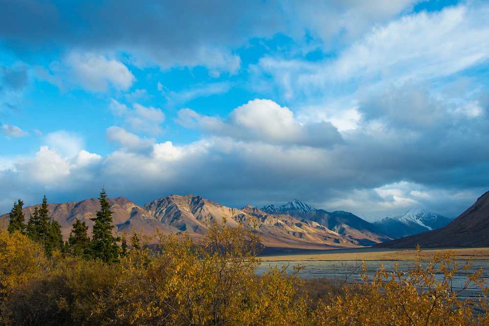 A swift river cuts through the wide mountain valley in the fall at Denali N.P.