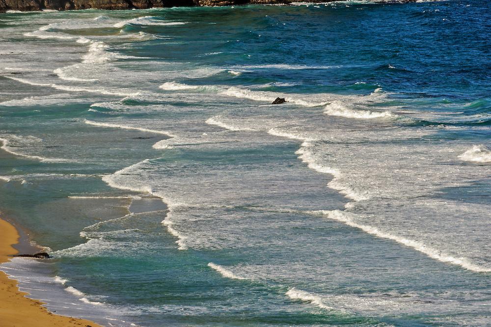 California Sea Otter State Game Refuge, Big Sur,  California