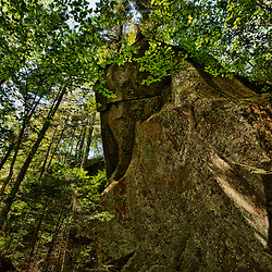 Boulders in the forest in Lost River Gorge in New Hampshire's White Mountains. North Woodstock.