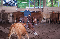 September 24, 2017 - Minshall Farm Cutting 6, held at Minshall Farms, Hillsburgh Ontario. The event was put on by the Ontario Cutting Horse Association. Riding in the $25,000 Novice Horse Non-Pro Class is Karen Hudon on Sophisticated Gun owned by the rider.