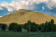 Signal Mountain in Grand Teton National Park