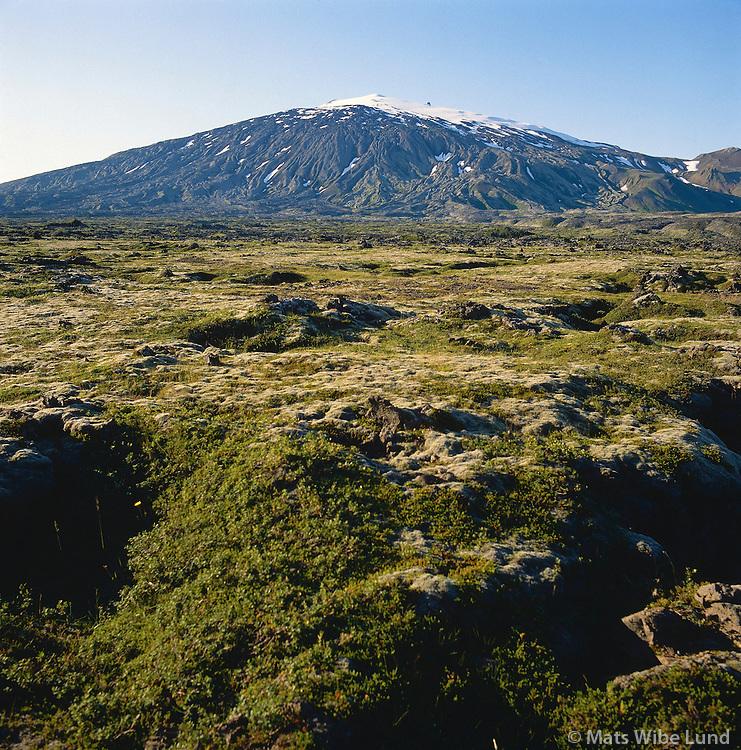 Snæfellsjökull, hraun fremst, Breiðuvíkurhreppur..Snaefellsjokull glacier and lavafield in front