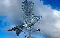 Red Kite statue in centre of Llanwrytd Wells, Wales.