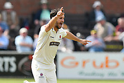 Wicket - Lewis Gregory of Somerset celebrates taking the wicket of Daryl Mitchell of Worcestershire during the Specsavers County Champ Div 1 match between Somerset County Cricket Club and Worcestershire County Cricket Club at the Cooper Associates County Ground, Taunton, United Kingdom on 22 April 2018. Picture by Graham Hunt.
