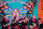 13 MAY 2012 - PHOENIX, AZ: Mariachi Rubor performing at the Puente office in Phoenix, AZ, on Mothers' Day.    PHOTO BY JACK KURTZ