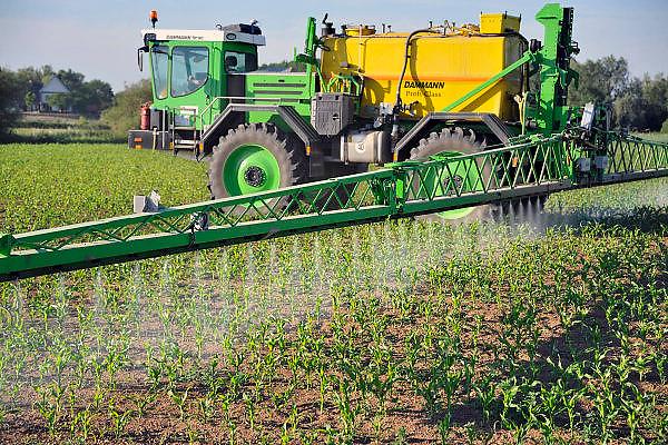 Nederland, Ooijpolder, 25-5-2011Een loonbedrijf bespuit jonge maisplantjes met een bestrijdingsmiddel tegen ziekten,onkruid of schimmels.Foto: Flip Franssen/Hollandse Hoogte